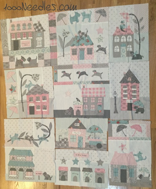 Raining Cats and Dogs All Blocks Done 1/24/2016