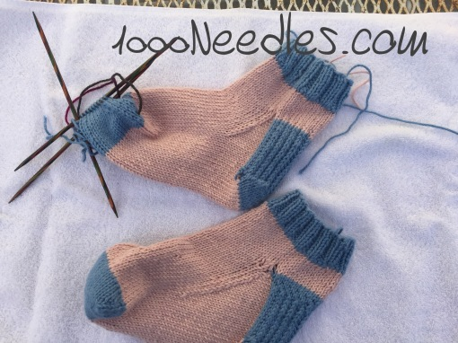 pink/blue socks 1/17/17