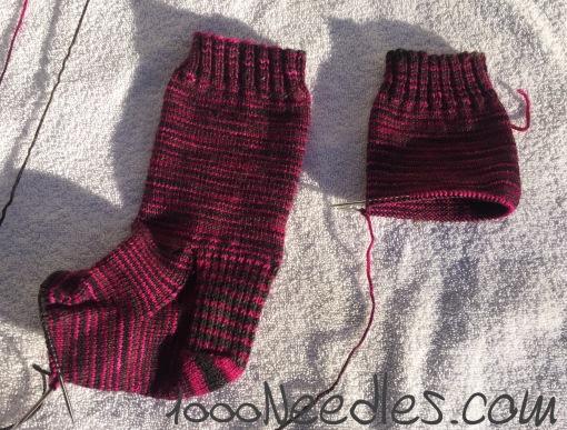 magenta/gray socks 1/31/17